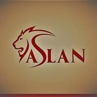 Aslan3010